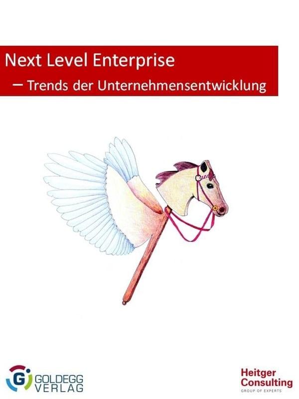 Next Level Enterprise - Trends der Unternehmensentwicklung - Goldegg Verlag